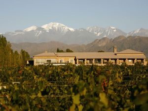 04-vineyards-mendoza_38833_600x450