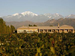 04-vineyards-mendoza_38833_600x450