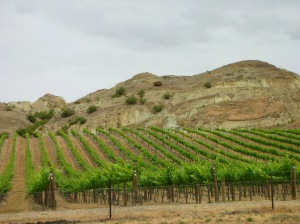 Central_Otago_Wine